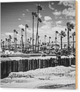 Newport Beach Dory Fishing Fleet Black And White Picture Wood Print by Paul Velgos