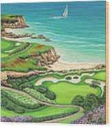 Newport Coast Wood Print