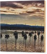 Newport Harbor At Dusk Wood Print