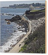 Newport's Cliff Walk View Wood Print