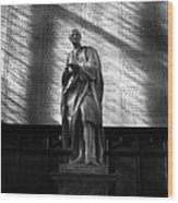 Newton At Cambridge Wood Print by Ed Pettitt