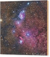 Ngc 6559 Emission And Reflection Wood Print