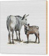 Nguni Cow and Calf 2 Wood Print