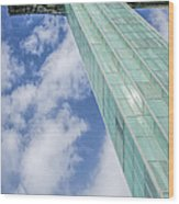 Niagara Falls Observation Tower Wood Print