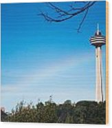 Niagara Landmarks Wood Print