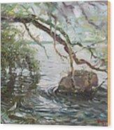 Niagara River Side Wood Print