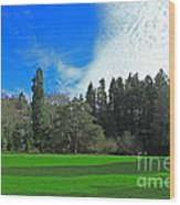 Nice Day In The Park Wood Print
