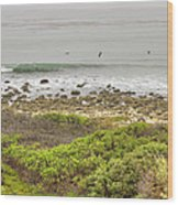Nicholas Canyon County Beach Wood Print