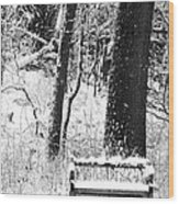 Nichols Arboretum Wood Print