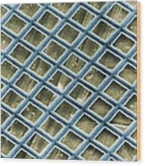 Nickel Electron Micrograph Grid Wood Print by David M. Phillips