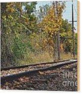 Nickel Plate Train Tracks Wood Print