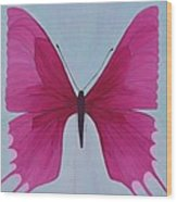 Nicole's Butterfly Wood Print
