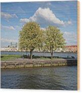Nieuwe Maas River Waterfront In Rotterdam Wood Print