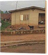 Nigerian House Wood Print