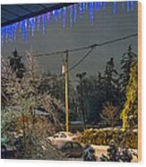 Night After The Ice Storm Wood Print