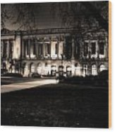 Night At The Library II Wood Print