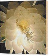 Night Bloomer Wood Print