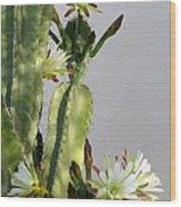 Night-blooming Cereus Wood Print
