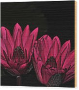 Night Blooming Lily 1 Of 2 Wood Print