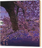 Night Blossoms Wood Print by Metro DC Photography