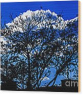 Night Blues Wood Print