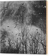 Burst Of The Night Flight Wood Print