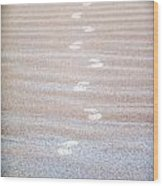 Night Beach Sand Footprints Wood Print