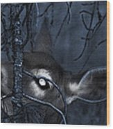 Night Grazing Wood Print