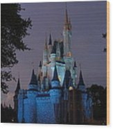 Night Illuminates Cinderella Castle Wood Print