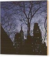 Night Lights Empire State Wood Print