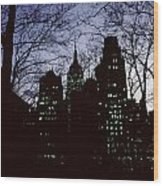 Night Lights Empire State Two Trees Wood Print