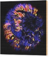 Night Pumpkin Iridescence Wood Print