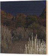 Night Sky Over Zion II Wood Print