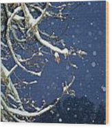 Night Snow Wood Print