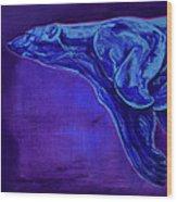 Night Swimmer Wood Print