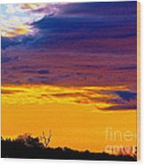Night Thinks Of Day Wood Print by Q's House of Art ArtandFinePhotography