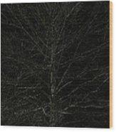 Night Tree Wood Print