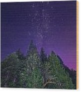 Night Trees Wood Print