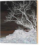 Nightfall Negative Wood Print