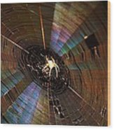 Nighttime Spider Web Wood Print