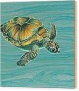 Nik's Turtle Wood Print by Emily Brantley