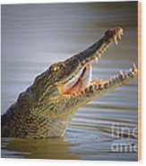 Nile Crocodile Swollowing Fish Wood Print