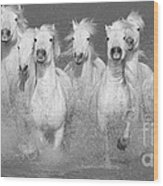Nine White Horses Run Wood Print