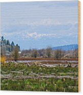 Nisqually Delta Of The Nisqually National Wildlife Refuge Wood Print