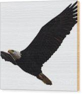 Nisqually Eagle 2 Wood Print