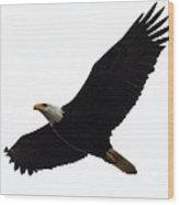 Nisqually Eagle Wood Print