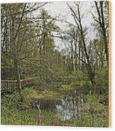 Nisqually National Wildlife Refuge/ Boardwalk Wood Print