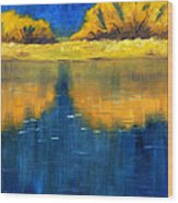 Nisqually Reflection Wood Print by Nancy Merkle