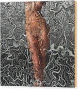 Niu Xii.  2012  80/56cm.  Wood Print by Tautvydas Davainis