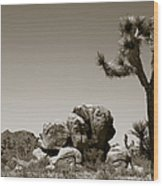 Joshua Tree National Park Landscape No 4 In Sepia  Wood Print
